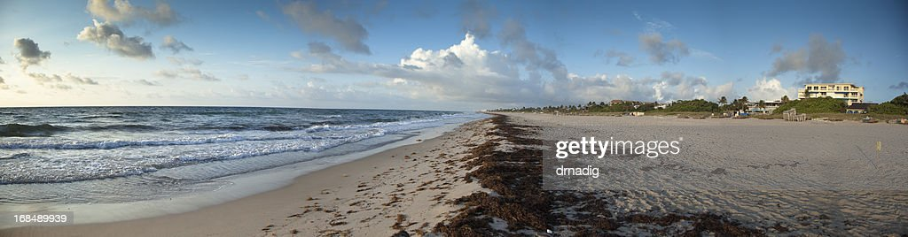 Florida Beach With Gentle Waves and Small Dune - Panorama : Stock Photo