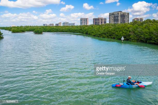 florida (us) - clam pass park, north naples - florida nature stock pictures, royalty-free photos & images