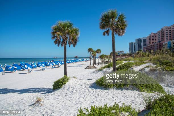 florida, clearwater beach, gulf of mexico - クリアウォーター ストックフォトと画像