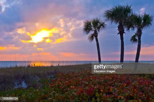 Florida, Crescent Beach, Siesta Key, Sarasota, Seascape, Sunset.