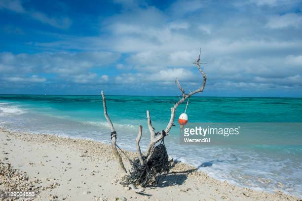 usa, florida, florida keys, dry tortugas national park, fort jefferson, beach sculpture on a white sand beach in turquoise waters - dry tortugas stock pictures, royalty-free photos & images