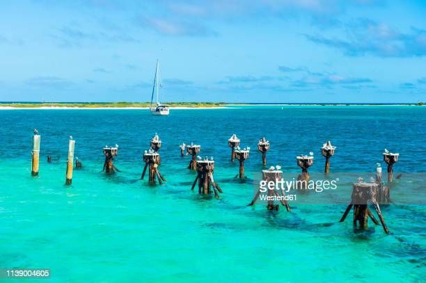 usa, florida, florida keys, dry tortugas national park, old pier of fort jefferson - dry tortugas stock pictures, royalty-free photos & images
