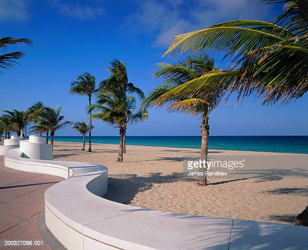 USA, Florida, Fort Lauderdale, winding path and palm trees on beach