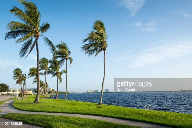 florida, fort myers, residential community, caloosahatchee river - fort myers stock pictures, royalty-free photos & images
