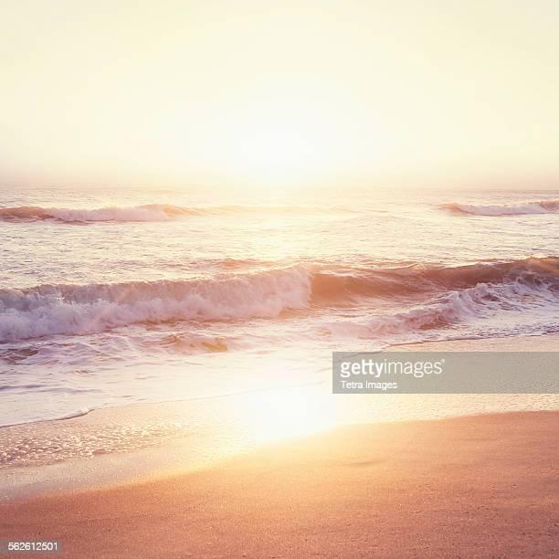 usa, florida, jupiter, beach at sunset - jupiter florida stock pictures, royalty-free photos & images