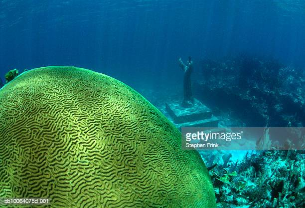 USA, Florida, Key Largo, Coral with statue of Christ of the Abyss, underwater