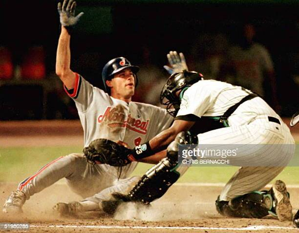 Florida Marlins catcher Charles Johnson tags out Monteal Expos shortstop Mark Grudzielanek at home plate 07 September during the third inning of...