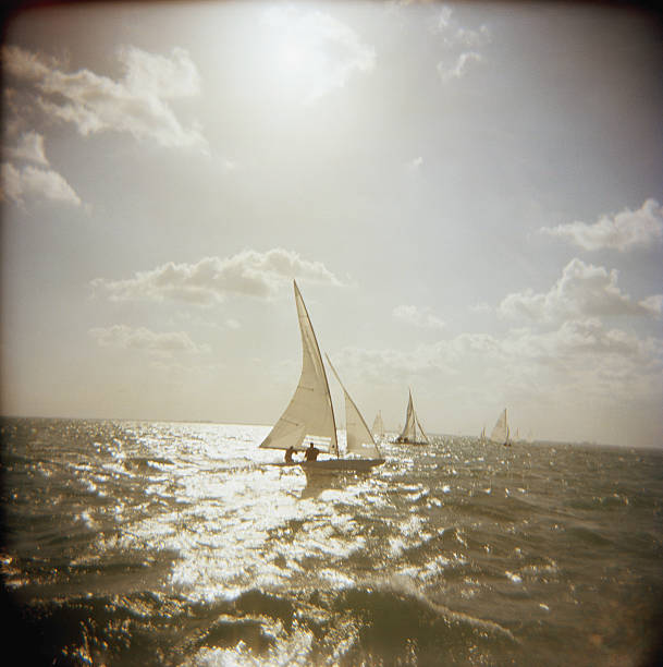 USA, Florida, Miami, Biscayne Bay, sailboats at sea