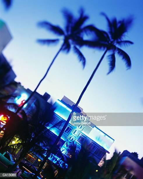 USA, Florida, Miami, Ocean Dive, sunset (selective focus)