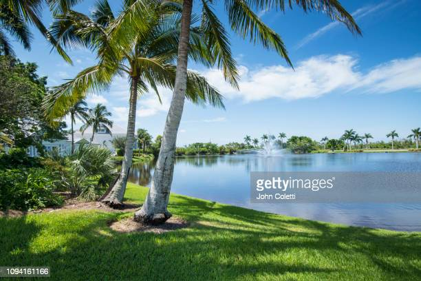 florida, naples, residential community - naples florida stock pictures, royalty-free photos & images