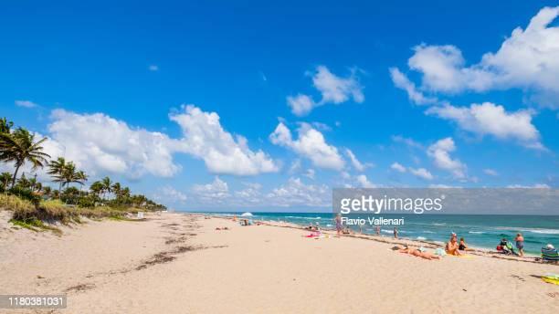 30 Top Condado De Palm Beach Pictures
