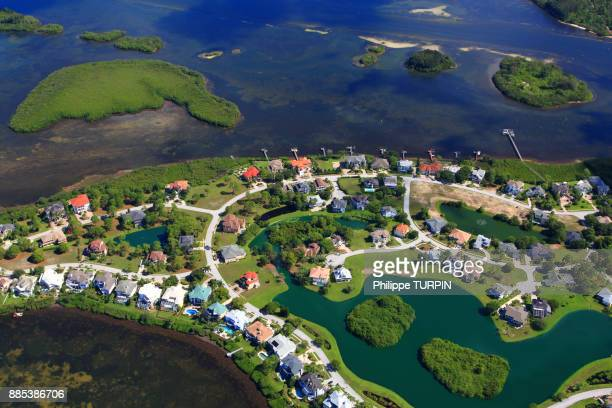 usa, florida. palm harbor, - palm harbor stock pictures, royalty-free photos & images