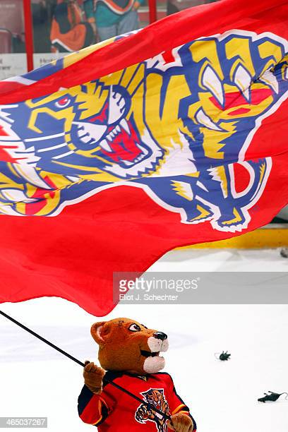 Florida Panthers Mascot Stanley C Panther celebrates their win against the New York Islanders at the BBT Center on January 14 2014 in Sunrise Florida