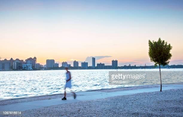 florida, sarasota, early morning exercising, sarasota bay, bird key - sarasota stock pictures, royalty-free photos & images