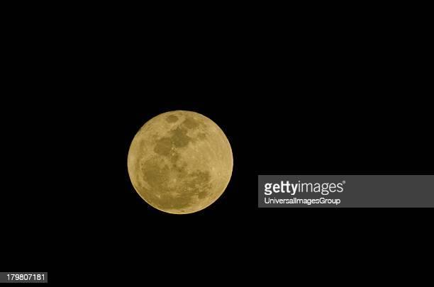 Florida, Sarasota, Siesta Key, Full Golden Moon against a clear Black Sky.