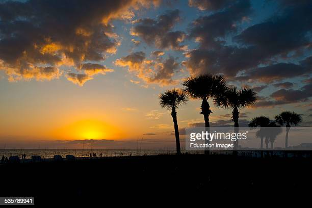 Florida, Siesta Key, Crescent Beach, Palms frame a cloudy dying sunset.