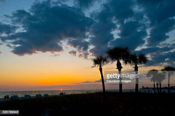 Florida Siesta Key Crescent Beach Palms frame a cloudy dying sunset