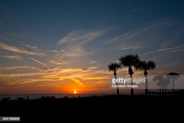 Florida Siesta Key Crescent Beach Palms framing orange sun and clouds at sunset