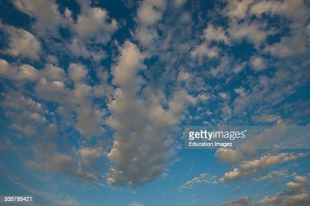 Florida, Siesta Key, Crescent Beach, white puffy streaks of clouds in a blue sky.