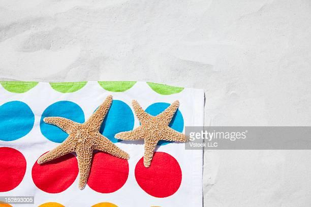 USA, Florida, St. Petersburg, Starfish laying on beach towel