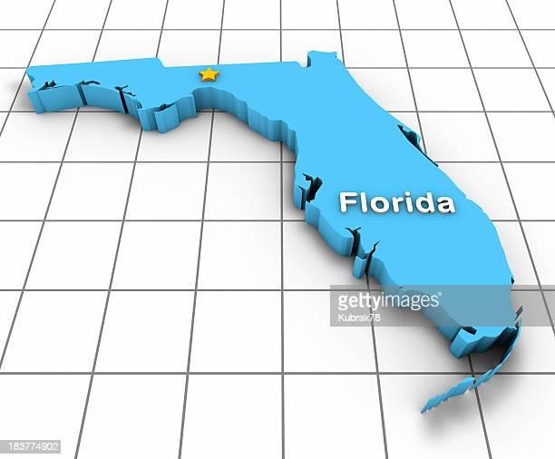 Florida State Map 3D