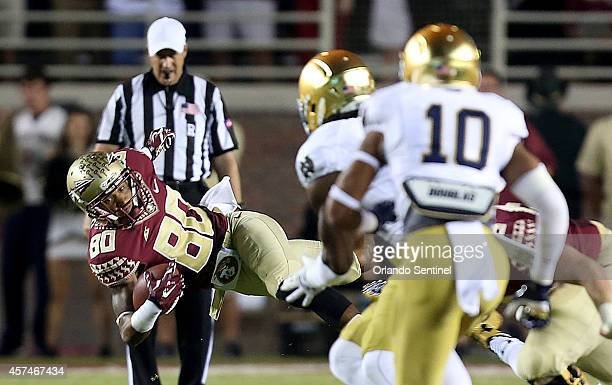 Florida State receiver Rashad Greene makes a catch early in the first quarter against Notre Dame at Doak Campbell Stadium in Tallahassee Fla on...