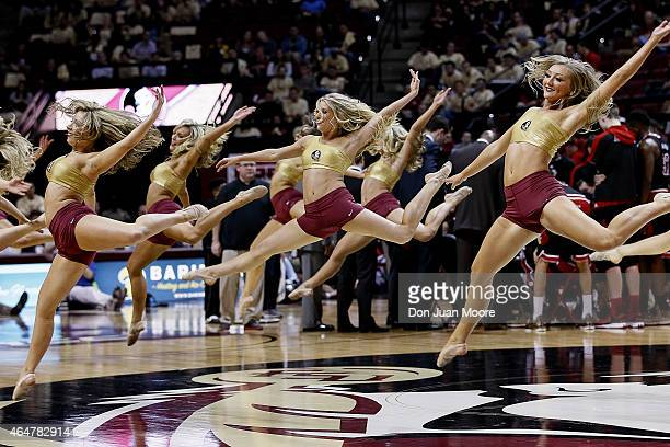 Florida State Seminoles Golden Girls Dancers performs during the game against the Louisville Cardinals at the Donald L Tucker Center on February 28...