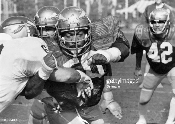 Florida State University All American none guard Ron Simmons works on position and blocking during a team practice at Tropical Park. The undefeated...
