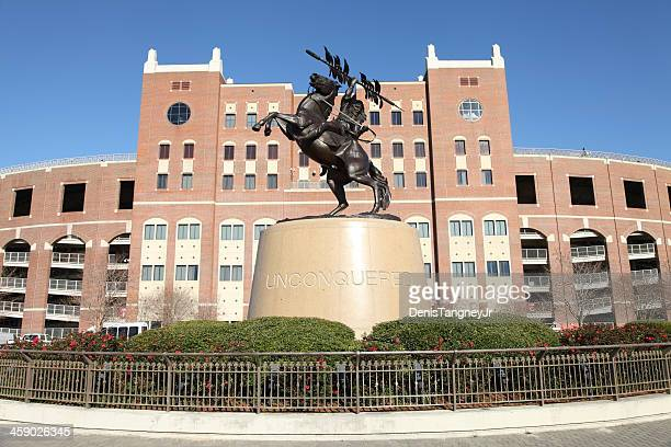 florida state university - florida state football stock photos and pictures