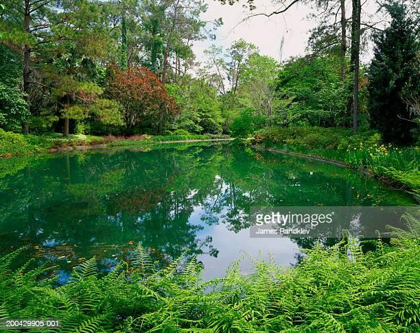 Florida, Tallahassee, Alfred B. Maclay Gardens State Park