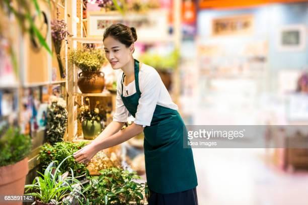 Florist arranging in shop