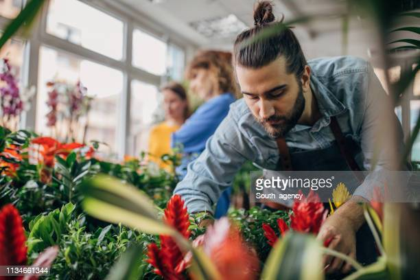 a florist clerk and a young guest - florist stock pictures, royalty-free photos & images