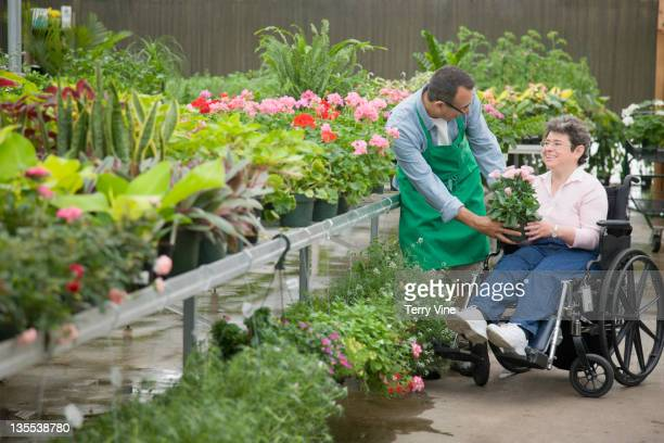 florist helping customer seated in wheelchair - texas independence day stock pictures, royalty-free photos & images