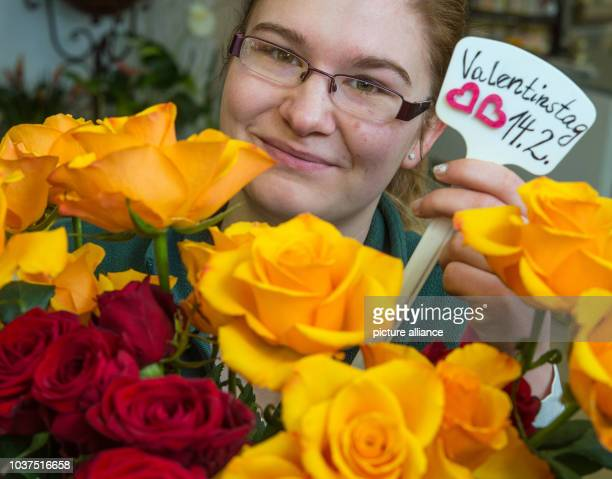 Florist Julia Schleuder presents roses with a sign reading 'Valentine's Day 142' in a florist in Manchschnow Germany 8 February 2016 PHOTO PATRICK...