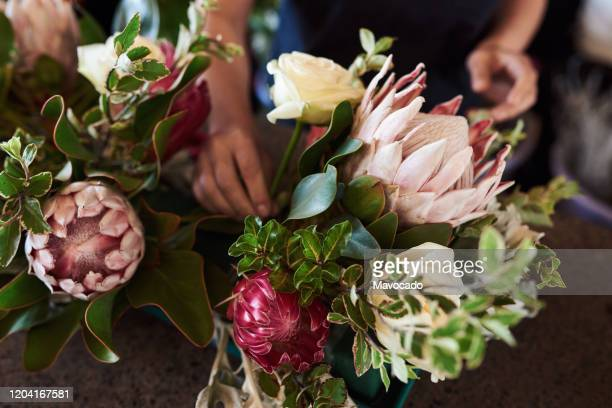 florist making a flower arrangement with proteas - bouquet stock pictures, royalty-free photos & images