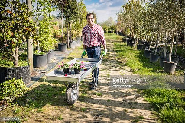 花屋所有者に手押し車で、植物園 - 造園師 ストックフォトと画像