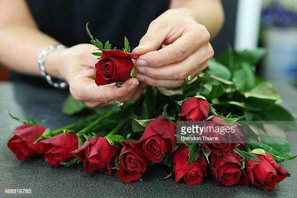 A florist prepares a bunch of roses as Sydneysiders prepare for Valentine's Day on February 12 2014 in Sydney Australia St Valentine's Day or the...