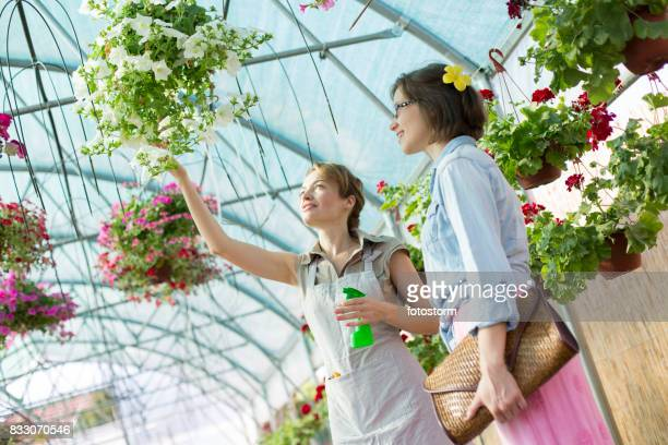 florist showing flower arrangement to young woman - hanging basket stock pictures, royalty-free photos & images