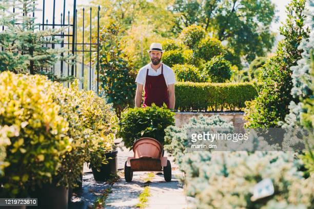 ガーデンセンターで働く花屋 - 植物園 ストックフォトと画像