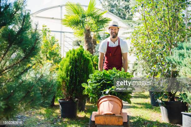 florist working in the garden center - sack barrow stock pictures, royalty-free photos & images