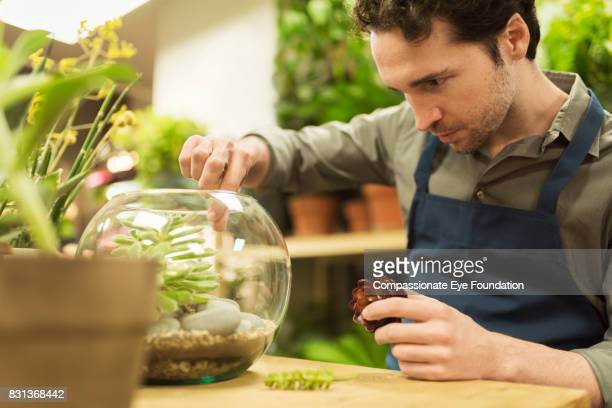 Florist working on plant arrangement in flower shop