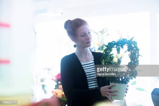 florist working with potted plants - sigrid gombert stock-fotos und bilder
