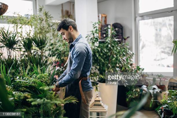 florists at the flower shop - florist stock pictures, royalty-free photos & images
