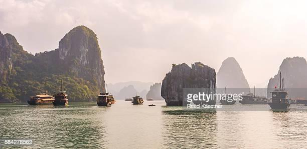 A flotilla of junks head into the limestone islands of Ha long Bay, north Vietnam