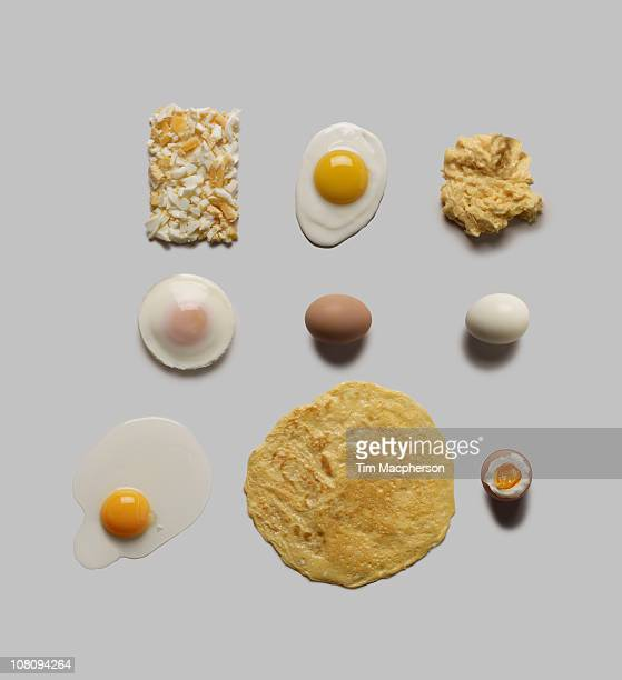 Flow chart of eggs
