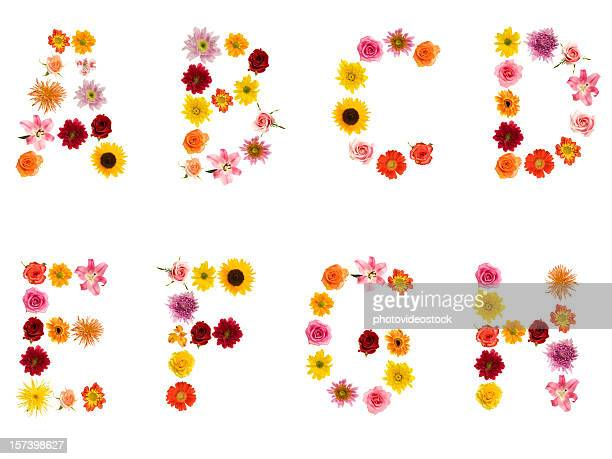 xxl flower alphabet - letter d stock pictures, royalty-free photos & images