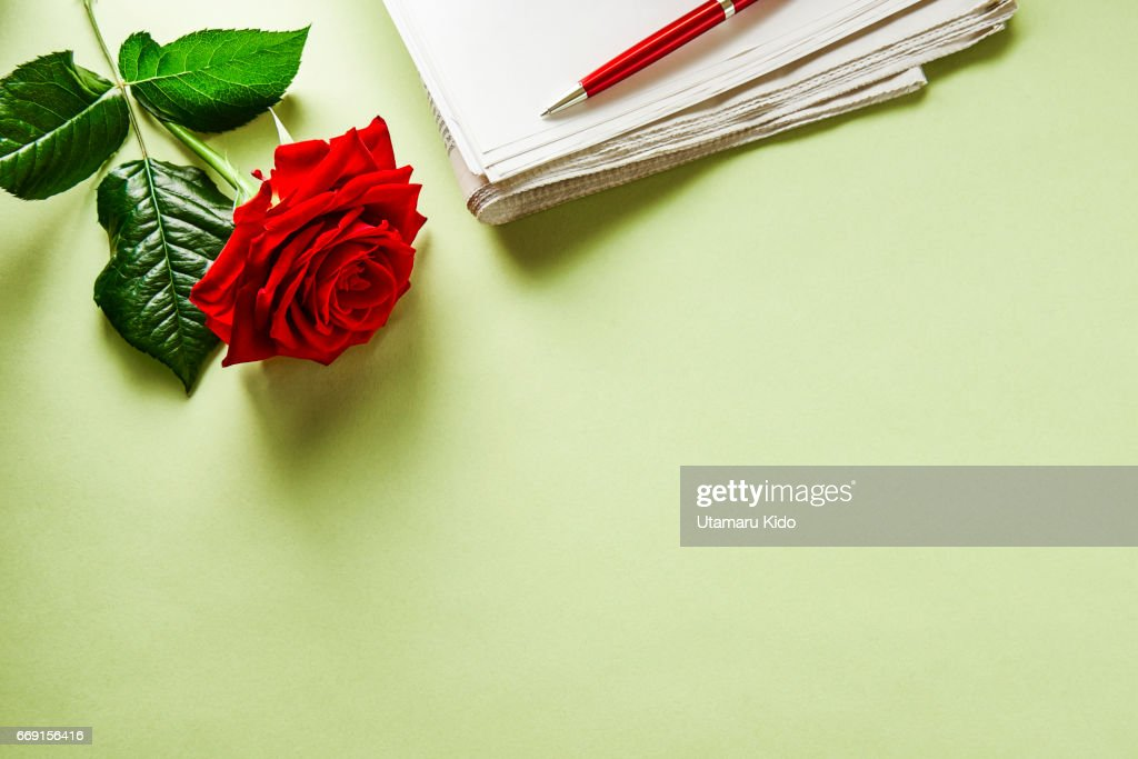 Flower and office supply. : Stock Photo