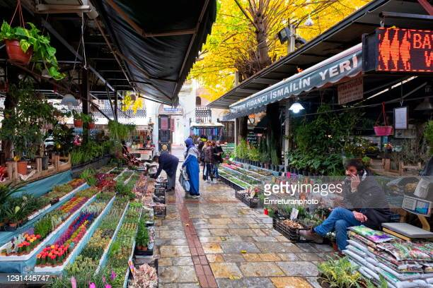 flower and sapling market in hisaronu square ,izmir. - emreturanphoto stock pictures, royalty-free photos & images