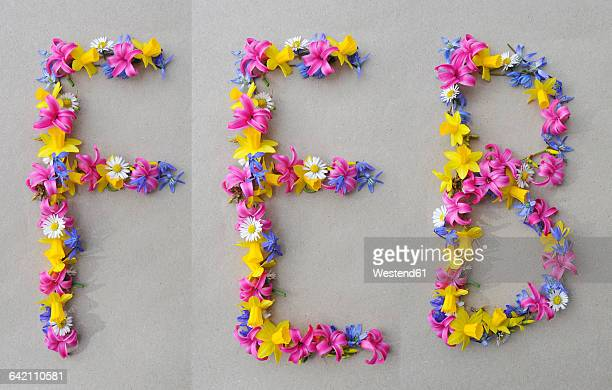 flower arrangement building first three letters of february - februar stock-fotos und bilder