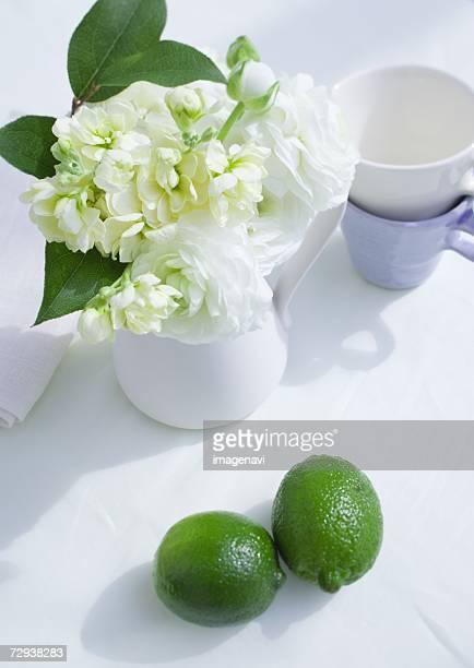 Flower arrangement in pot